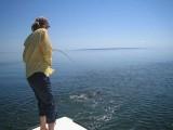 Saltwater Tarpon Fish On