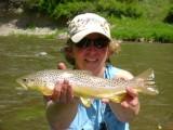 Freshwater School Brown Trout
