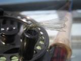 Freshwater School Entomology