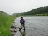 Freshwater Fish On