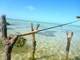 Salt Water Fishing